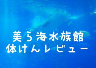 台風の沖縄「美ら海水族館」体験レビュー|子供とのお出かけをより楽しむためのヒントや情報