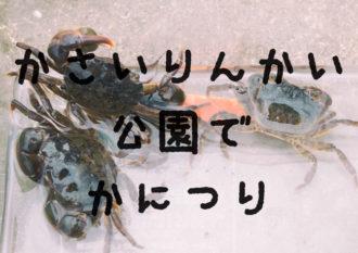 葛西臨海公園でカニ釣り!必要な道具やカニの種類や飼い方などを解説